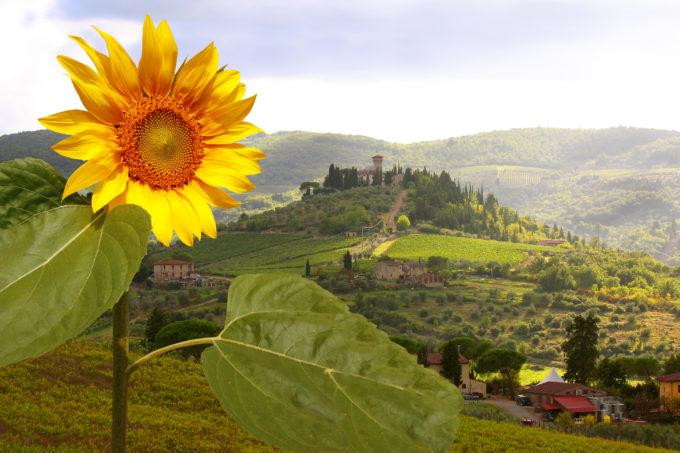 Karta Italien Chianti.Toscana Reseguide Chianti